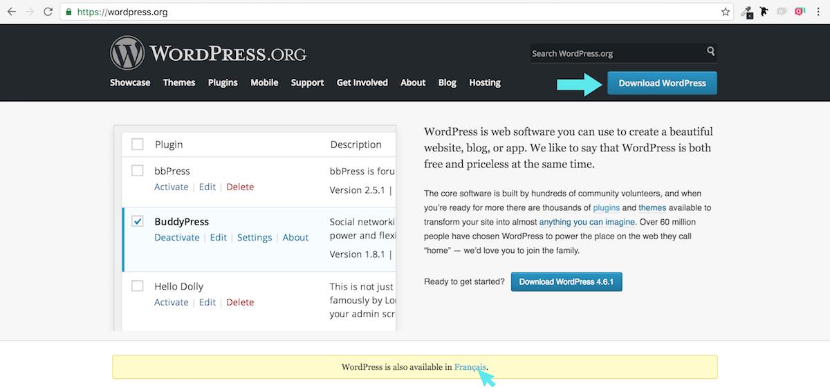MAMP local WordPress