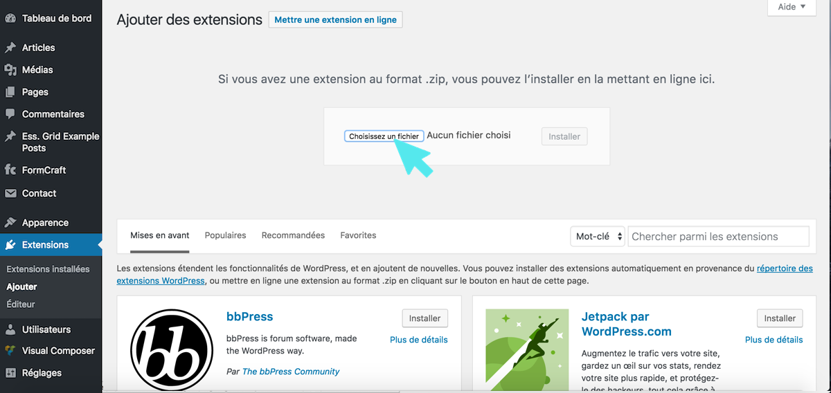 wordpress-extension-en-ligne-choisir-un-fichier