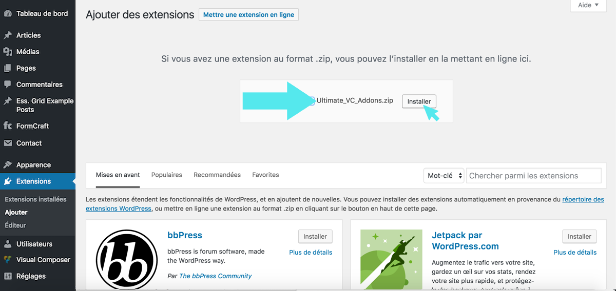 wordpress extension