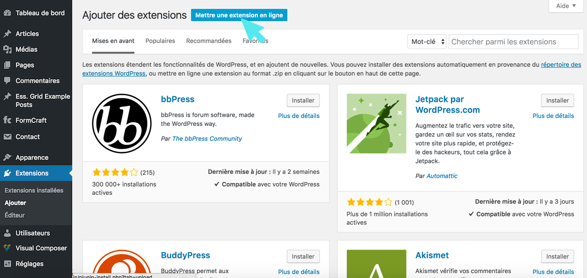 wordpress mettre une extension en ligne
