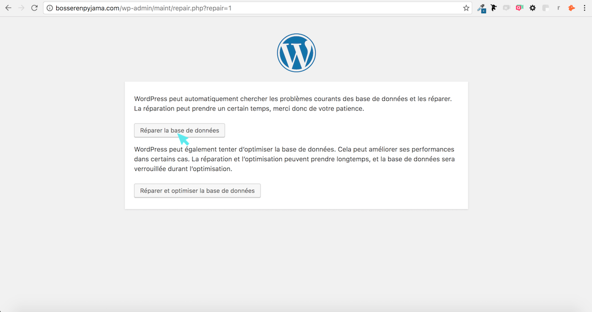 wordpress base de donnees
