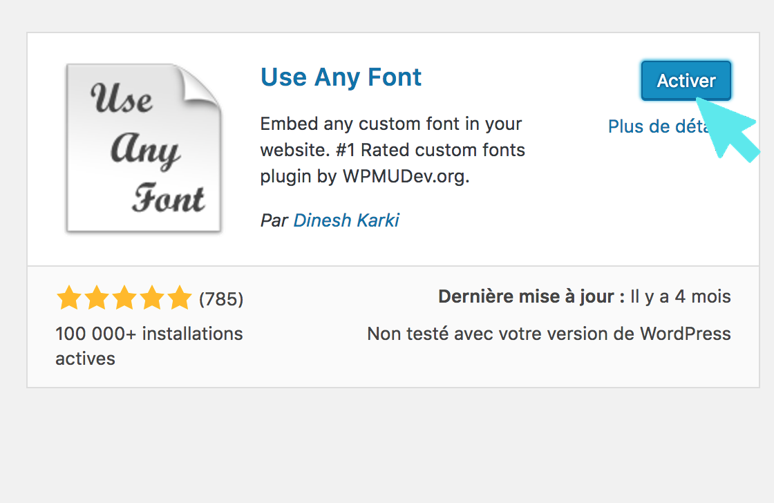 use any font plugin active