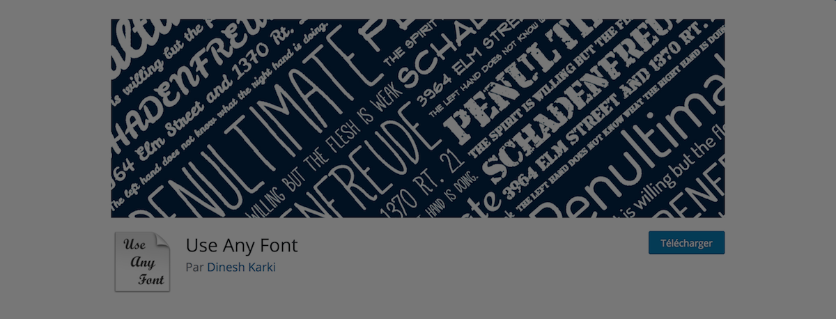 use any font plugin dinesh karki