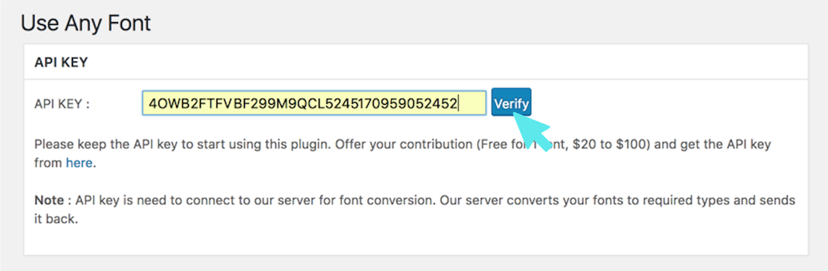 use any font plugin verify
