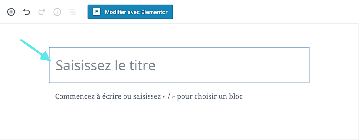 WordPress titre H1